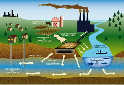 coal pollution invades water air and Water pollution/case studies  invades water invades coastal life  air is forced through water to released unwanted gases which reduces odor and improves taste.