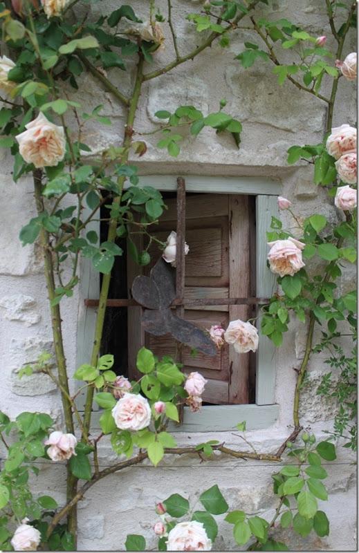 Belas janelas jeito de casa blog de decora o e for Fachadas con plantas trepadoras