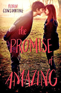 The Promise of Amazing Robin Constantine book cover