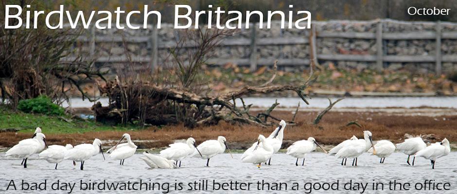 Birdwatch Britannia