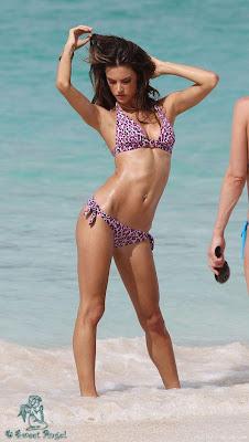 Alessandra Ambrosio Wallpaper in Bikini