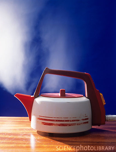 Convection Everyday Examples Of Convection Electric Kettle