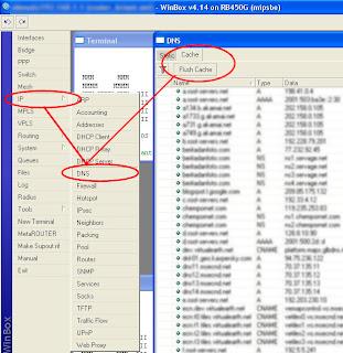 Pengertian Fungsi Dan Cara Flush DNS Cache