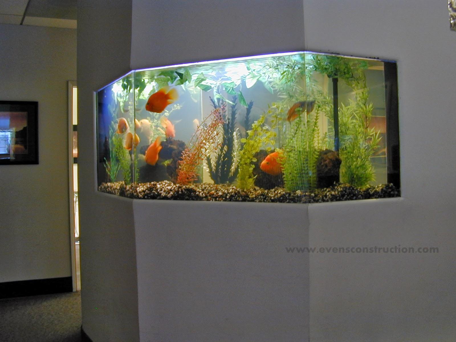 ... -gallon-freshwater-fish-tank-aquarium-design-marine-aquariums-and.jpg