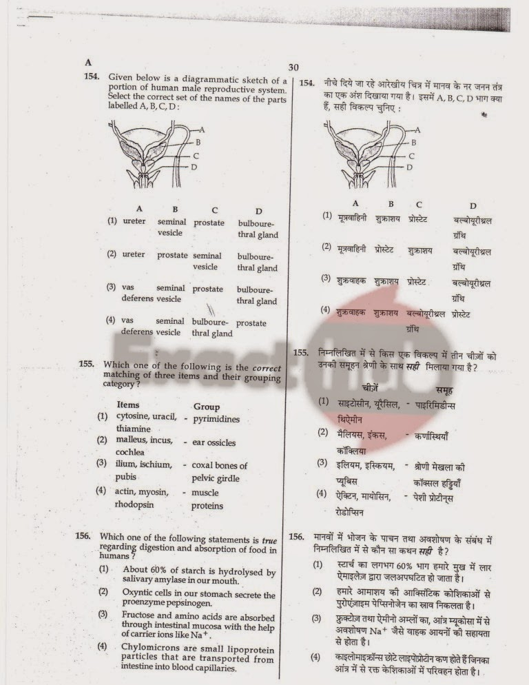 AIPMT 2008 Exam Question Paper Page 31
