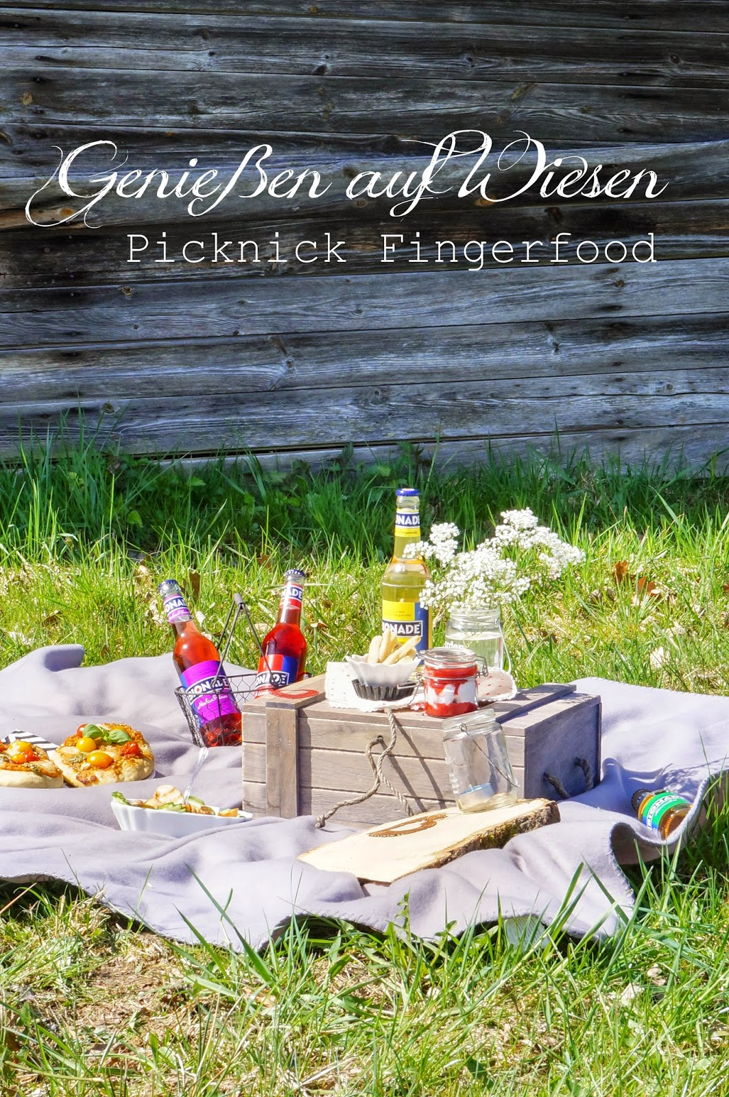 genie en auf wiesen picknick fingerfood ein blogevent. Black Bedroom Furniture Sets. Home Design Ideas