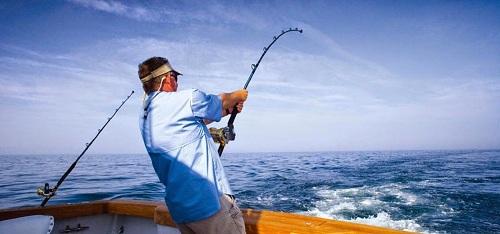 Nơi nào bán máy câu cá, cần câu uy tín tại TPHCM?