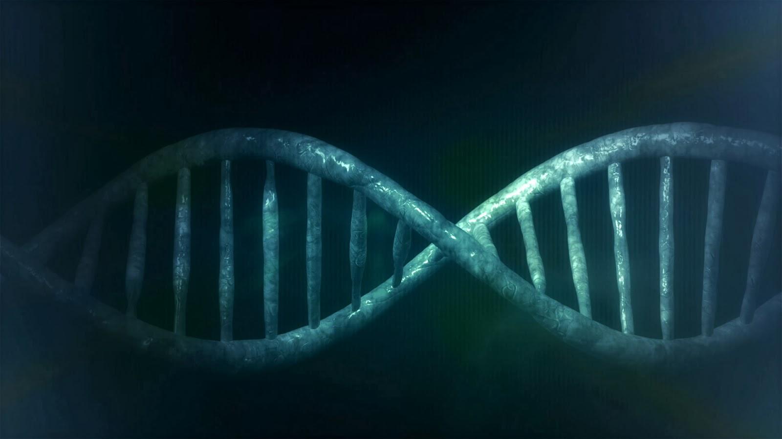 Human DNA by Виталий Смолыгин