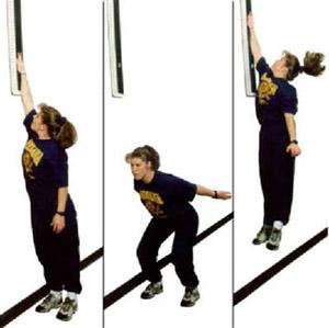 Vertical jump core workout names