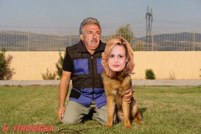 Δαγκώνει αυτή η σκυλίτσα των Άνω Λιοσίων !!!