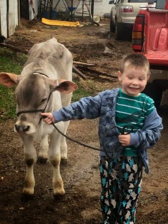 Country Fair Blog Party: When You Give A Boy A Calf