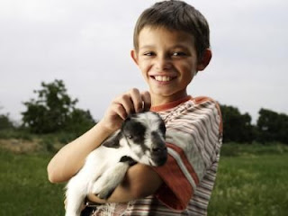 Using A Goat Instead Of A Lawn Mower