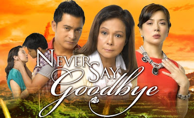 Never Say Goodbye April 23, 2013