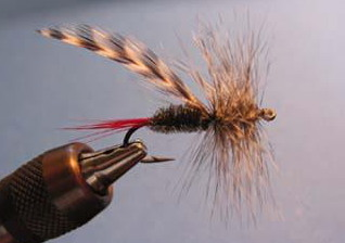 How to wrap back through a dry fly wing to create a heavier hackle.