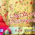 Jagung Bakar Janda Lynda Moy Lirik