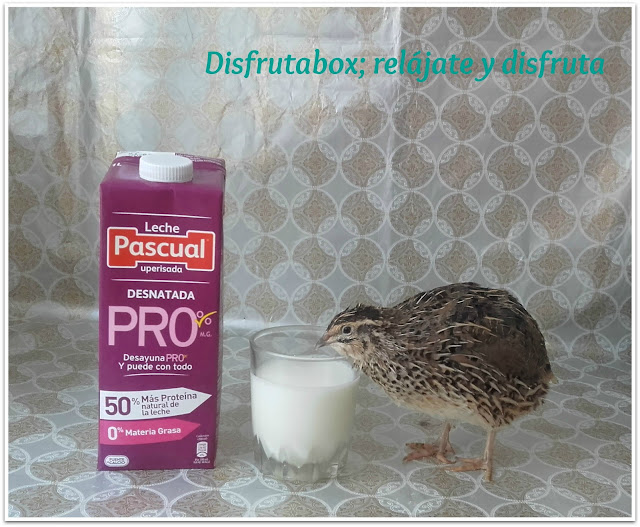 leche pascual desnatada