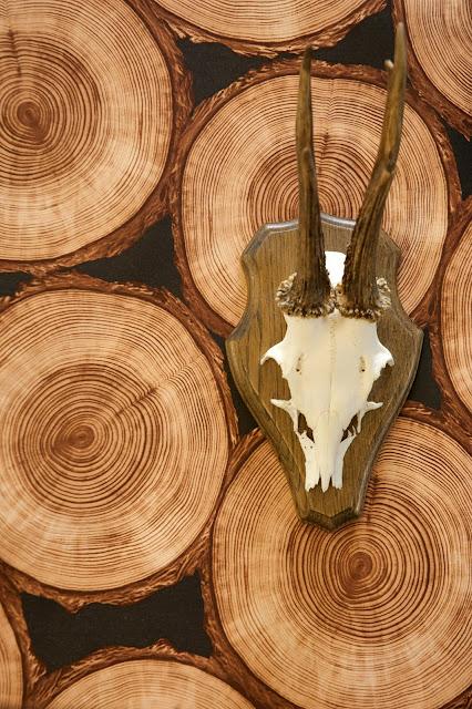 Funky Friday blog: Stoer hout op de muur