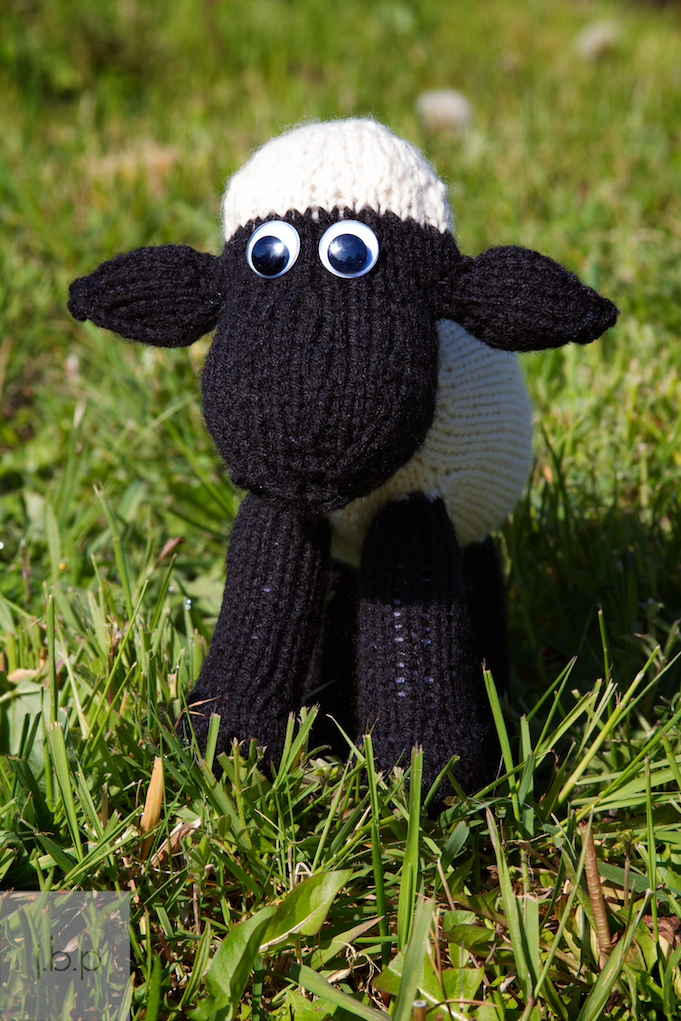 SHEEP KNITTING PATTERN - Browse Patterns