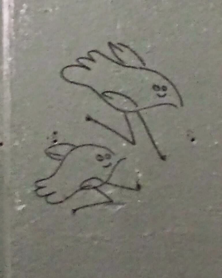 cute graffiti birds