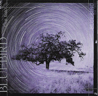 Bluebird - The Two (2000, PacifiCo)