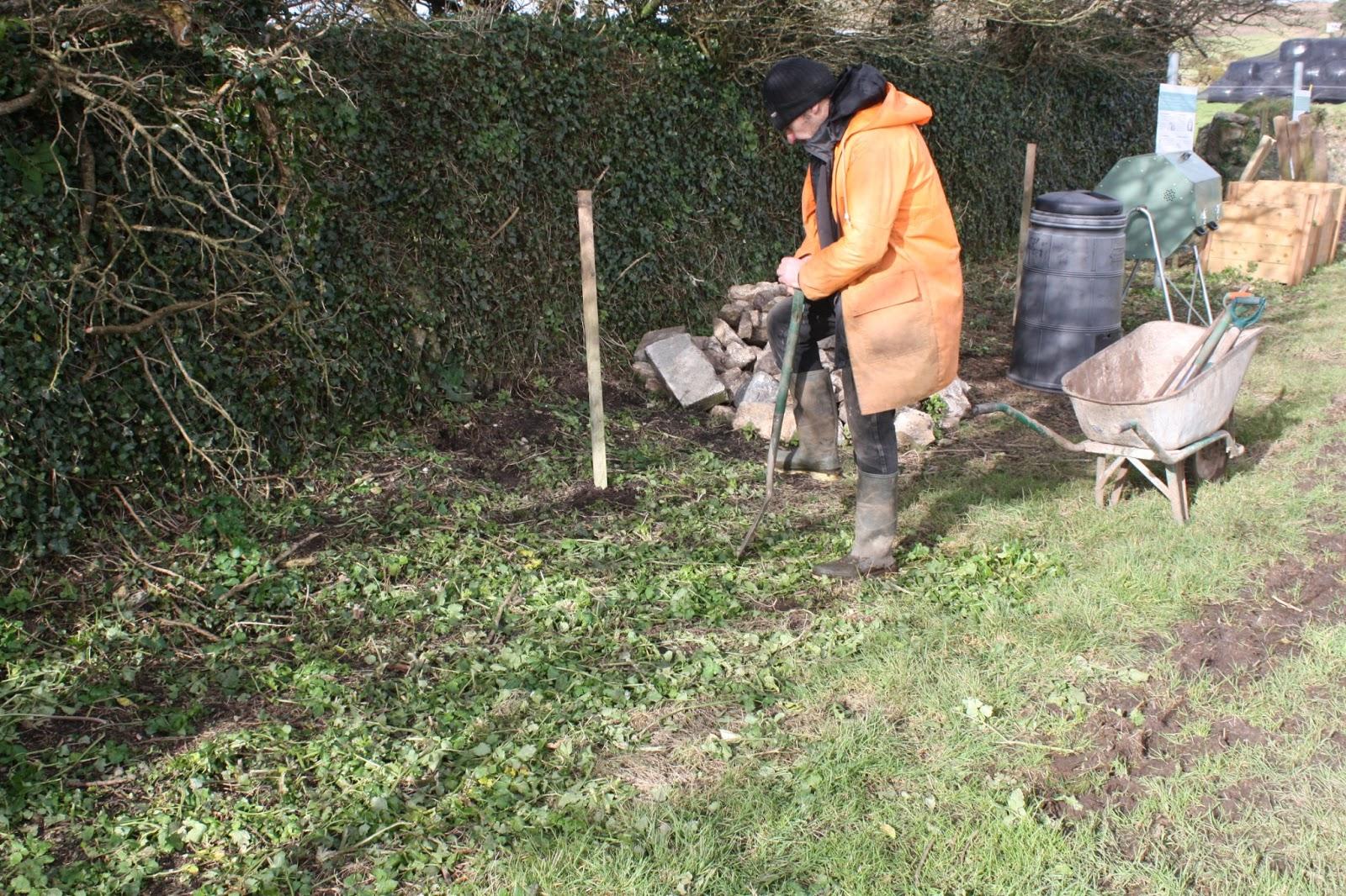 Bosavern Community Farm February 2013
