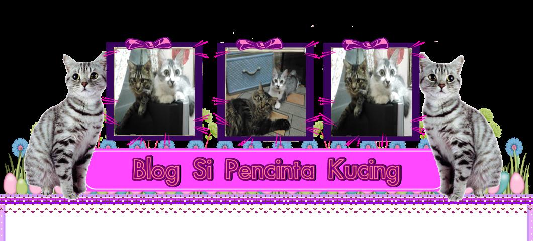 Blog Si Pencinta Kucing
