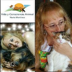 Para concertar una cita con Nuria Martínez dirígete a Consultas y Tratamientos o haz click aquí