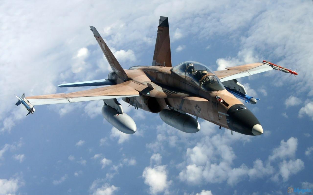 http://4.bp.blogspot.com/-73QUHcdf6ak/TvMvo4Ivk9I/AAAAAAAAEC8/WKIeL-J46PI/s1600/F+A+18+Hornet.jpg