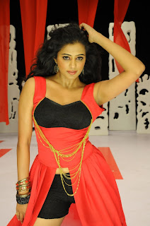 Priyamani glamorous AVATAR in Chandi Movie Spicy Pictures