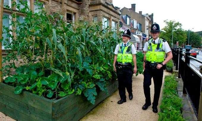 Les jardins pres de la station de police