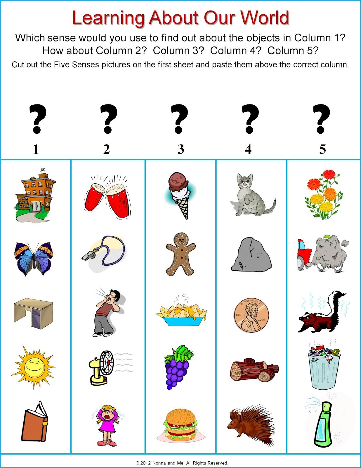 Uncategorized 5 Senses Worksheet 5 senses worksheet my five preschool activities lessons and