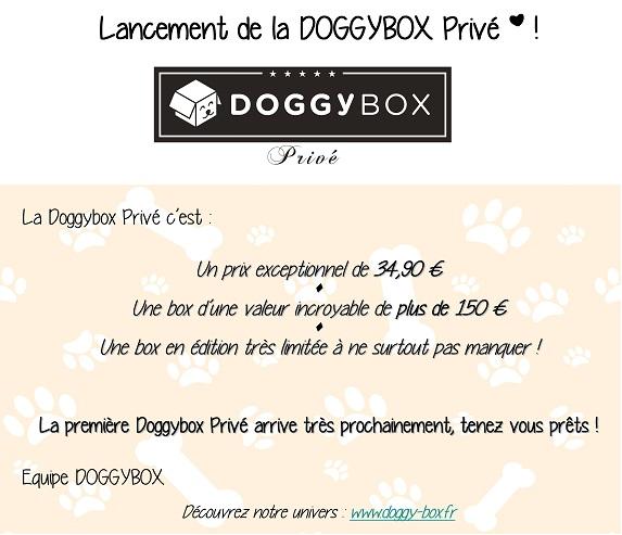 Lancement de la Doggy Box Privé