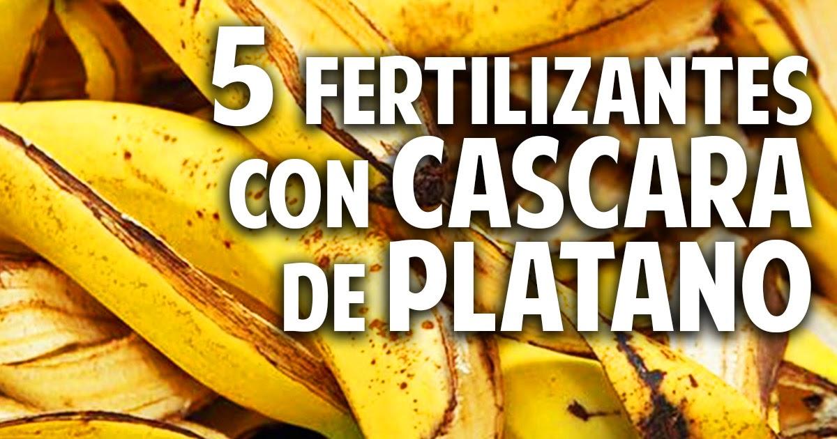 5 fertilizantes con cascara de pl tano m s frutos - Cosas del jardin ...