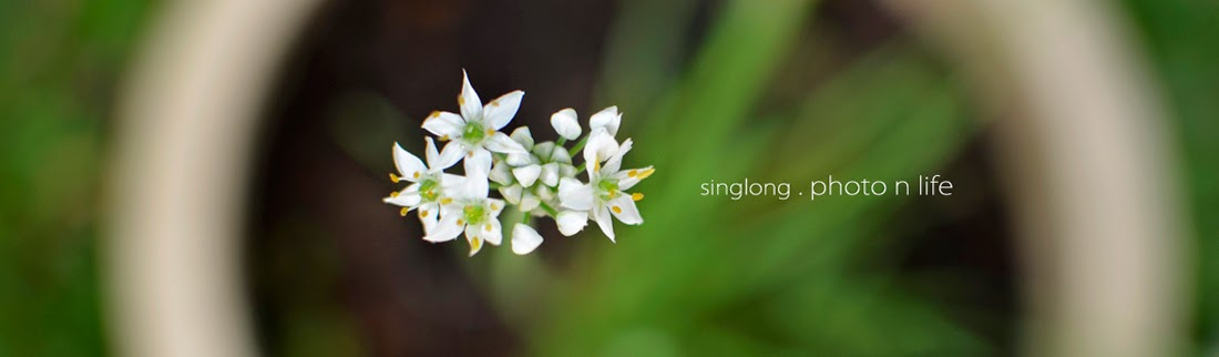 singlong . photo n life