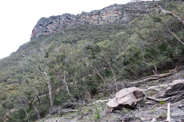 landslip with mount abrupt above