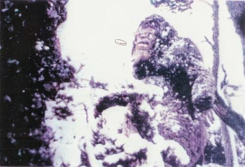 Moyie Springs Bigfoot