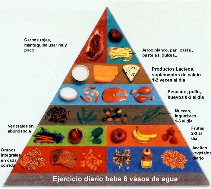 Piramide alimenticia 2013