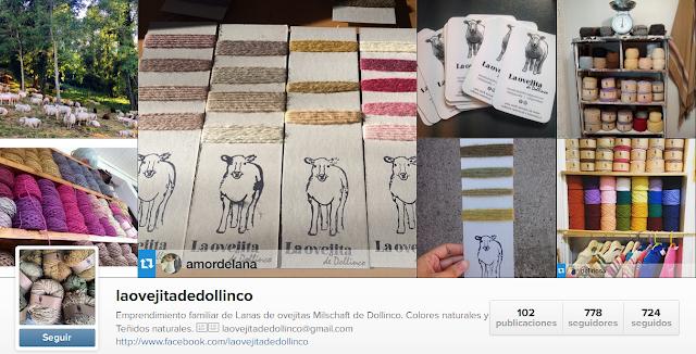 https://instagram.com/laovejitadedollinco