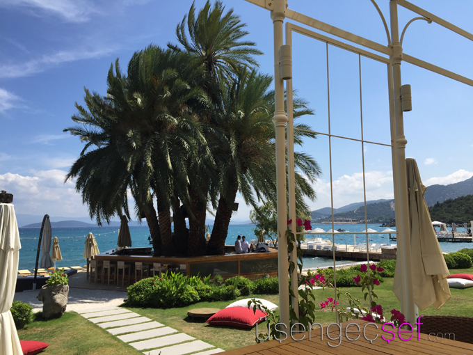 casa-dell-arte-hotel-casa-frida-beach-club