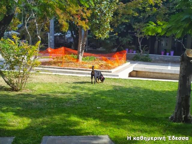 Πάρκο τουαλέτα σκύλων