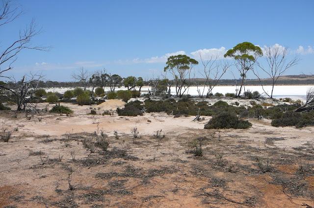 Hyden in Western Australia