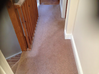 carpet cleaning, pile reversal