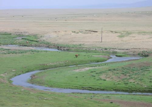 This picture shows a landscape from the Mongolian steppes on the edge of the Gobi Desert. Credit: Jyper / Wikimedia Commons
