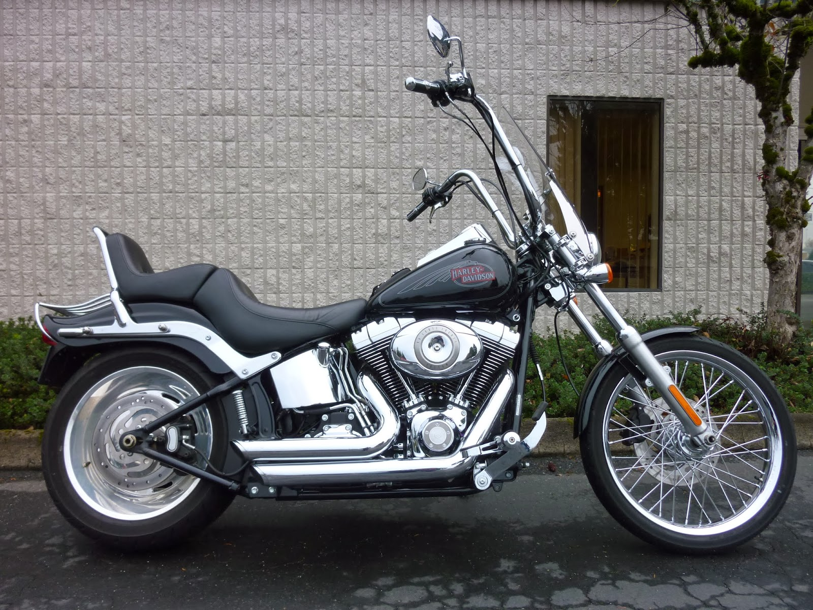 OMG Motorsports: 2009 Harley Davidson FXSTC Softail Custom