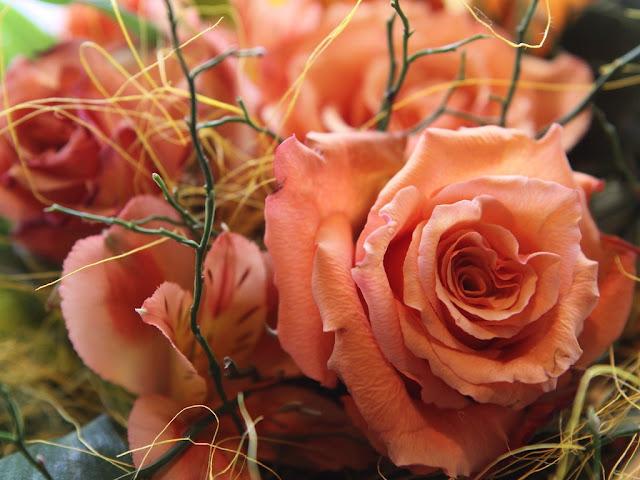 sweet rose wallpaper