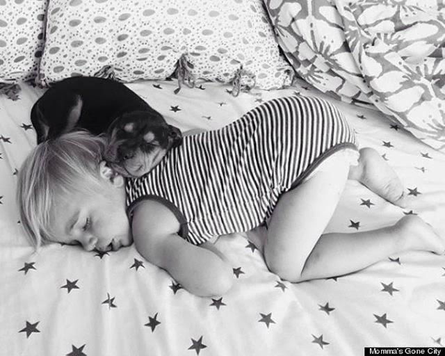Las siestas de Theo y Beau, sensación de Internet