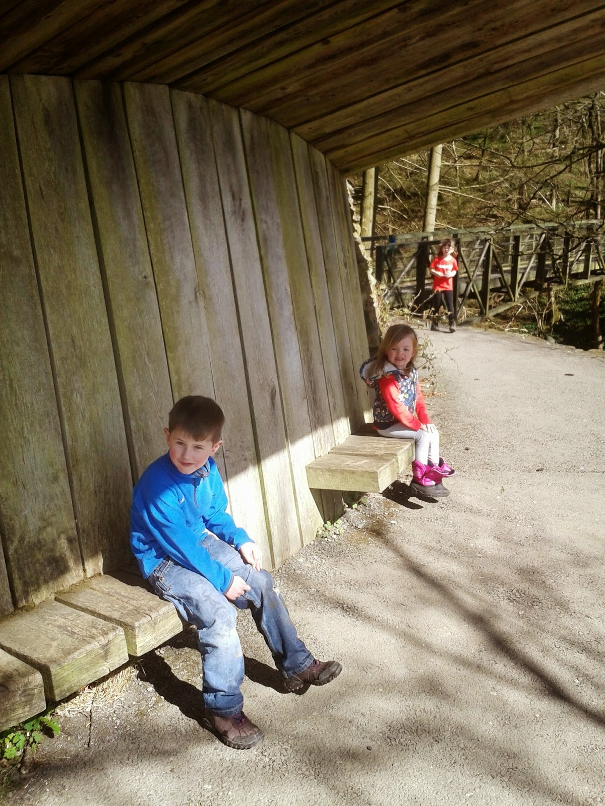 Grizedale Forest Gruffalo trail, having a rest.