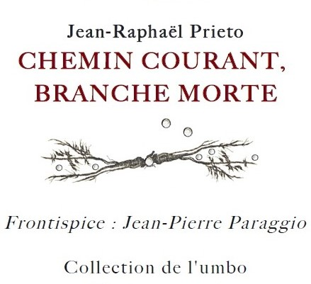 Jean-Raphaël PRIETO, CHEMIN COURANT, BRANCHE MORTE, Collection UMBO, 2018