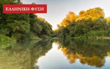 Ελληνική φύση online