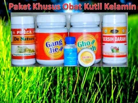 paket obat herbal kutil kelamin